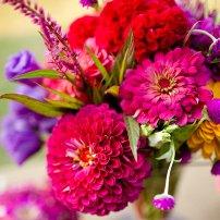Lulet e mia - Ragip Dragusha (Poezi) pranvera