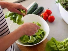 Diete per te humbur kilogramet e tepert ne menyre te bindshme.