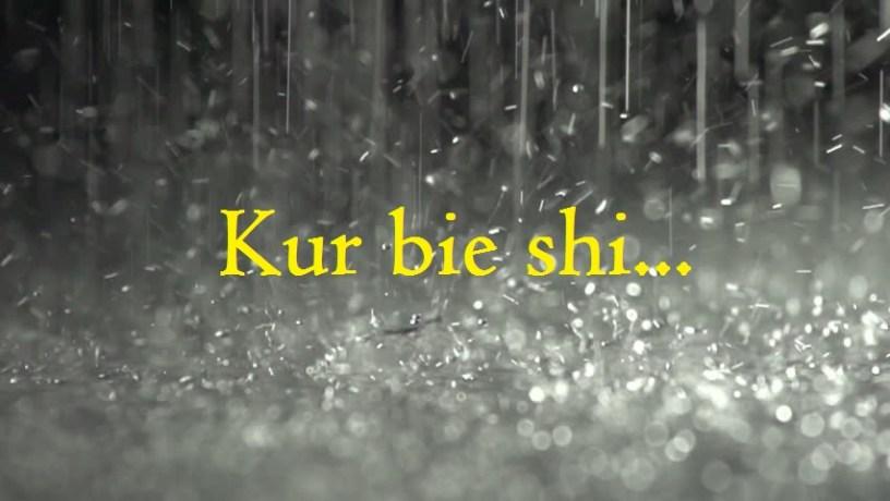Kur bie shi