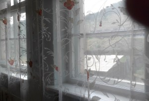 window with lace curtains