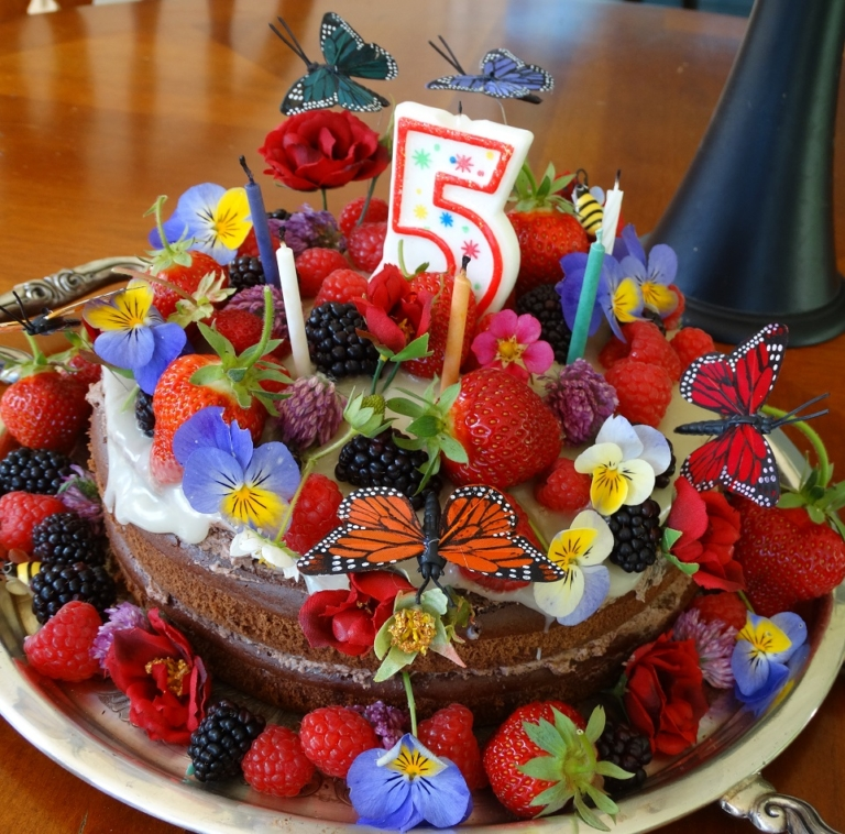 Healthy Birthday Cake Recipe With Milk Thistle Rose Hips