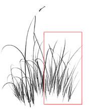 Desenhando Grama E Capim Desenho Negativo A Expressao Da Arte
