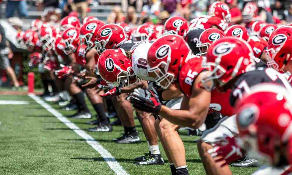 Georgia Bulldogs 2017