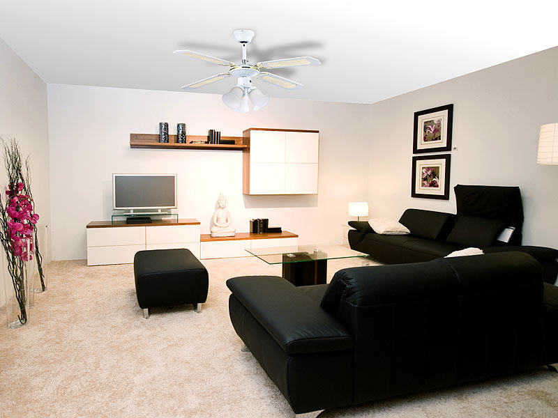 Sichler Haushaltsgerate Ventilateur De Plafond O 105 Cm Avec Lampe Vt 696 Bois Blanc