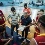 basket gold & Gold vs castanea -2