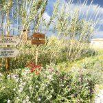 Riserva naturale in Sicilia
