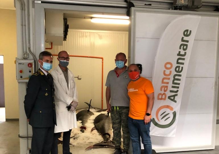 Banco Alimentare della Sicilia Onlus: distribuiti 845 kg di tonno rosso a sette mense solidali