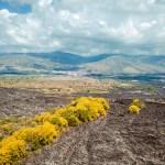 La straordinaria bellezza della Sicilia vulcanica