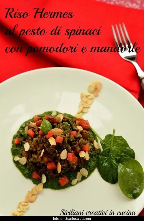 Hermes-Spinat-Pesto-Reis, mit Tomaten und Mandeln