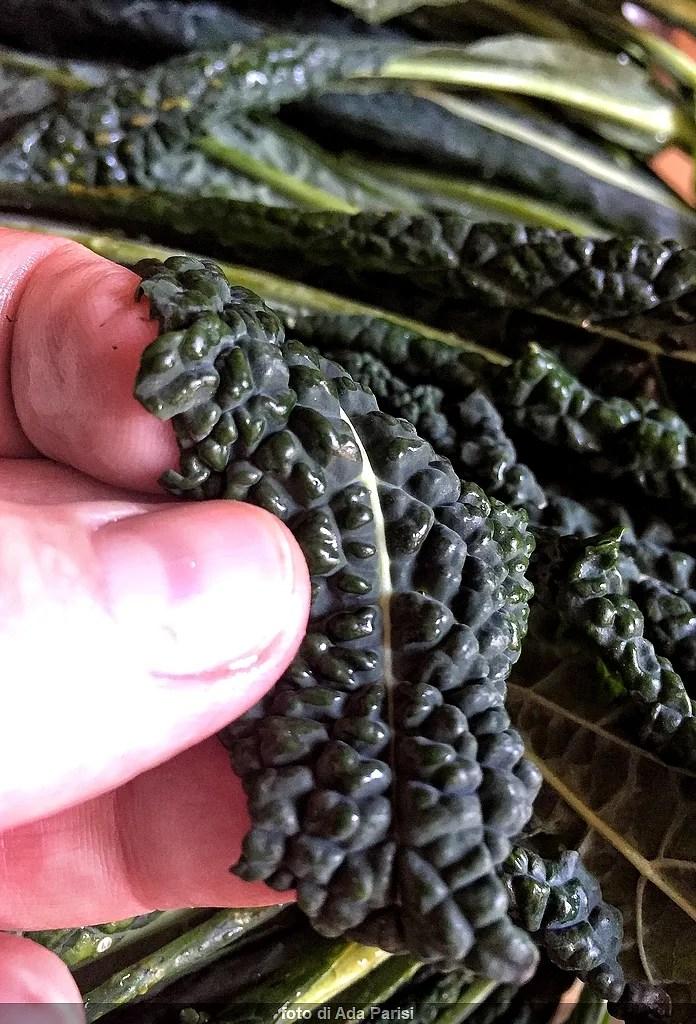De saison en Février: légumes de fruits et de poissons à acheter