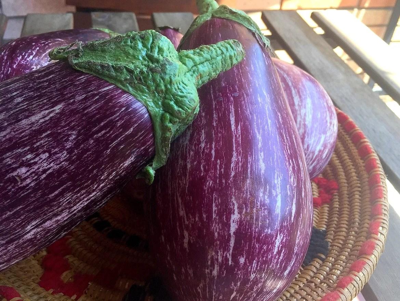Saison bis Saison im Juni: Obst Gemüse und Fisch zu kaufen. Hier kommen die Auberginen