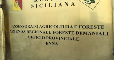 #Enna. 20 mila euro per ottenere appalti, indagati due funzionari regionali