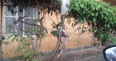 #Messina. Tragedia sfiorata a Tonnarella: crolla un palo della luce mentre passa una minicar