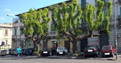 #Messina. Conferenza stampa per i piani dell'assessorato all'Ambiente