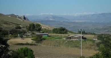 Parco dei Nebrodi, suini neri allevati nel sudiciume e lasciati senza acqua: denunciati padre e 2 figli