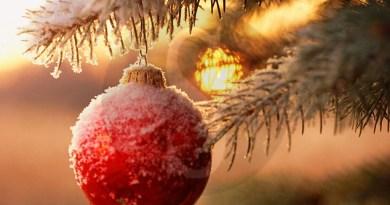 Eventi. Natale a Messina, entro il 27 novembre le proposte per la I e VI Circoscrizione