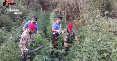 #Barcellona. Operazione Triade, per tre imputati la Cassazione rinvia al TdL di Messina
