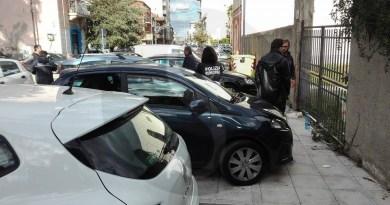 #Barcellona. Pitbull e rottweiler aggrediscono un ragazzo