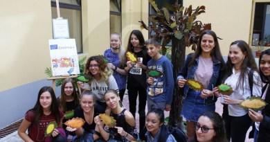 Attualità. Gli studenti del liceo Seguenza di Messina a scuola d'Europa