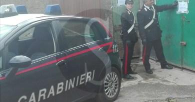 Cronaca. Messina, Operazione Zikka: arrestato anche il veterinario