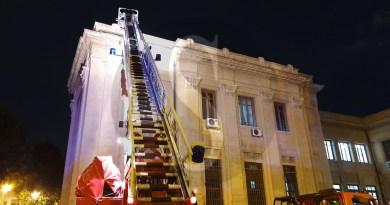 Messina, Vigili del Fuoco salvano un gatto sul tetto di Palazzo Zanca