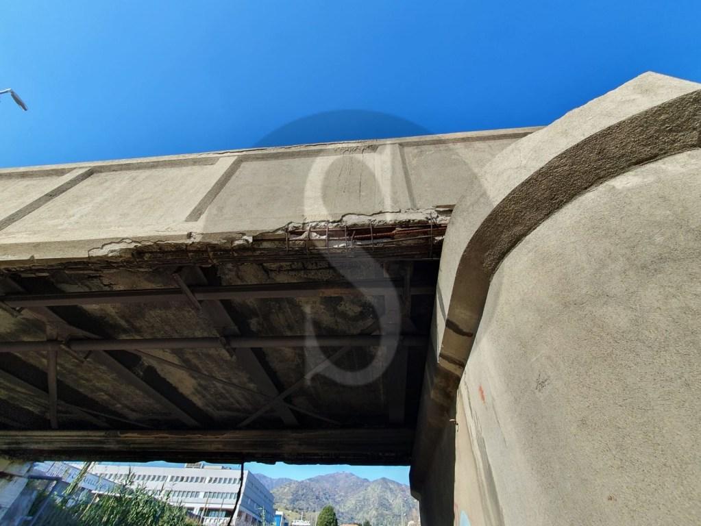 Messina, degrado ambientale: scarti di carne e pesce abbandonati da un noto supermercato nel torrente Zafferia