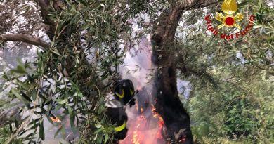 Lo scirocco impazza e le fiamme tornano a devastare la costa tirrenica messinese