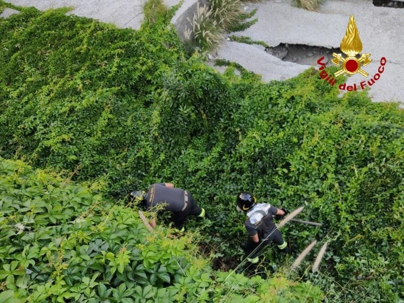 Messina, i Vigili del Fuoco salvano un gattino caduto in un dirupo