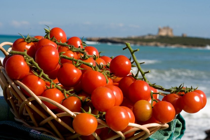 Also known as Ciliegino or cherry tomatoes, are considered the greatest richness of agriculture in Southern Sicily, widely cultivated in the greenhouses..