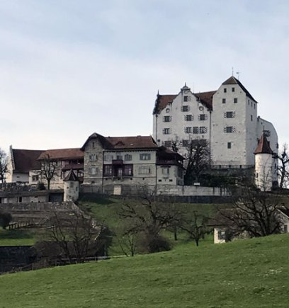 Blog Beitrag ProSpecieRara Setzlingsmarkt Schloss Wildegg