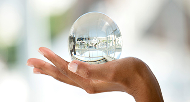need for transparency in business
