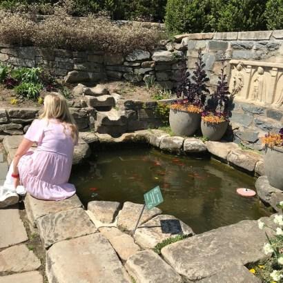 National Arboretum, St. Catherine's Pool