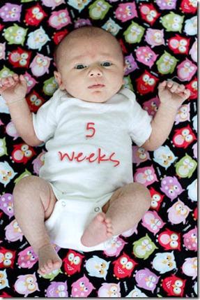 baby 5 weeks old