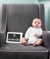 5 month old baby