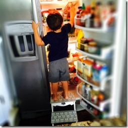 toddler helping himself to fridge