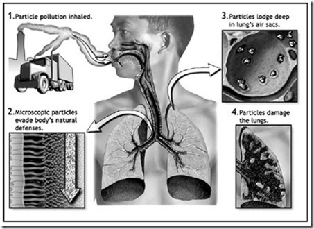 particle pollution lung effect