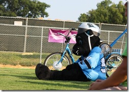 sir purr panthers mascot