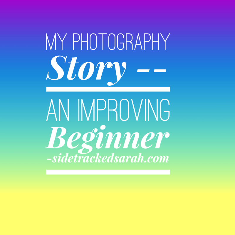 My Photography Story – An Improving Beginner