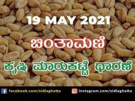 Chintamani Agriculture APMC Farmers Market May 19