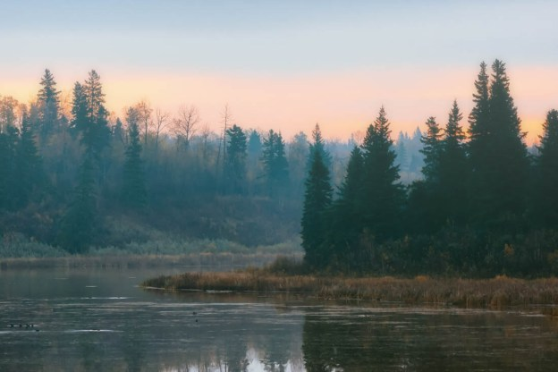 Foggy autumn sunrise over Astotin Lake Islands at Elk Island National Park, Alberta landscape.