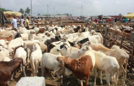 Attaque du marché de bétail de Namoungou: Le président du Faso ...