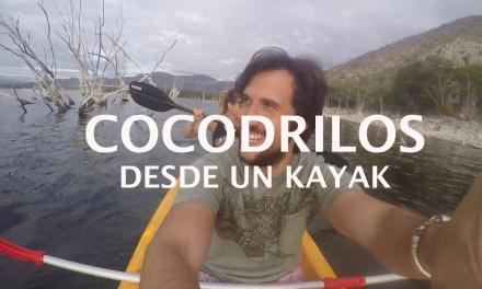 [VIDEO]Hacer Kayak con Cocodrilos en el Lago Enriquillo