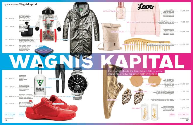 Wagnis-Kapital 1/2017 (für Business Punk)