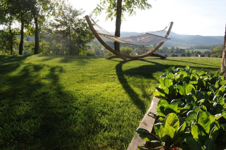image of a large hammock on emerald green grass with with hillside views behind it in the left corner are acacia trees and at front right a flower bed with baby romaine lettuce the image is backlit by the setting sun