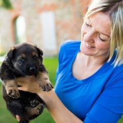 image showing amanda helen atkins with one of her home bred german shepherd puppies daughter of oima z jirkova dvora and Gladio german shepherd