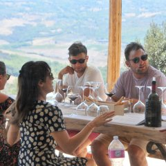 Driven & Guided Wine Tours
