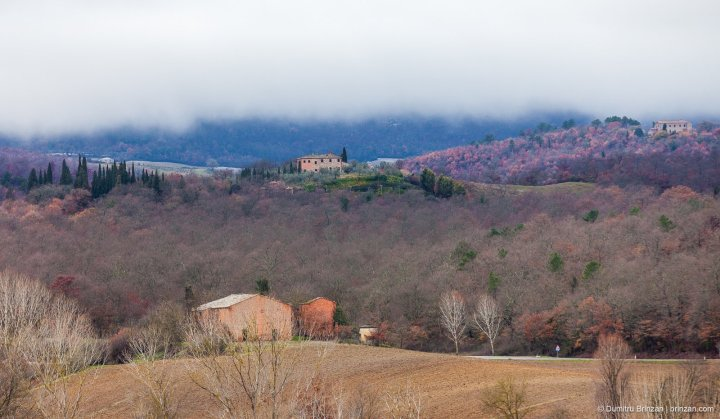 Image showing rolling hills of siena farm houses on poggios or small hills oak covered hills and misty sky