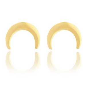 Roestvrij stalen (RVS) Stainless steel oorbellen hoorn