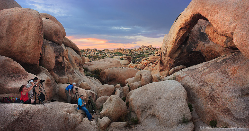 Joshua Tree Photo Workshop