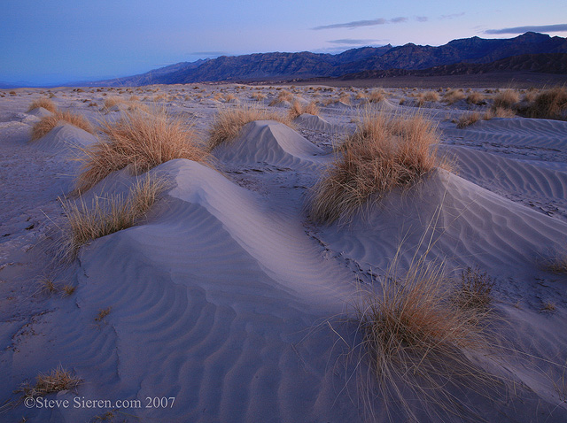 Windswept patterns on the dunes in Death Valley.